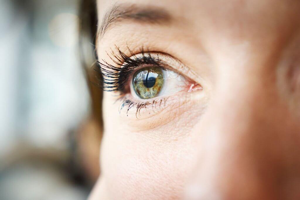 اتجاهات العين